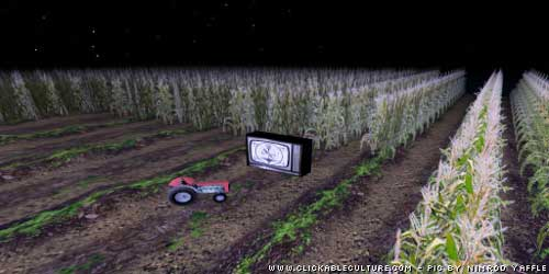 Second_life_cornfield